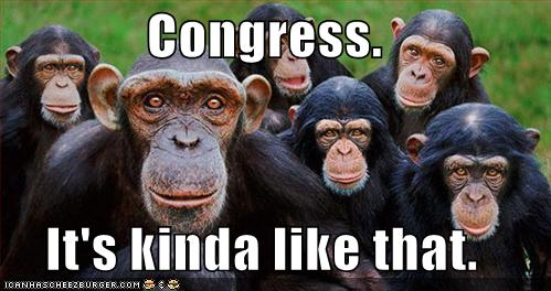 congressmonkeysdy1.jpg