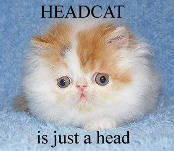 headcat.jpg