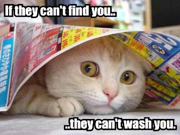 if-they-cant-find-you-they-cant-wash-you.jpg