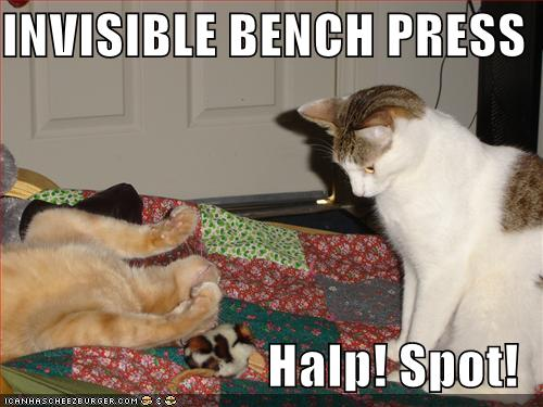 invisible-bench-press.jpg