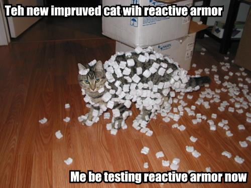teh-new-impruved-cat-wih-reactive-armor-me-be-testing-reactive-armor-now.jpg